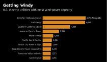 Xcel Is First Big U.S. Utility to Swear Off Greenhouse Gas