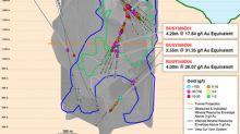 Continental Gold Drills High-Grade Gold Over 1,200 Metres in the Veta Sur System at the Buriticá Project, Colombia