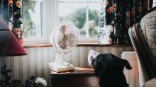 """""""Coole"""" Zeiten: Diese Ventilatoren sind richtig stylisch"""
