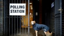 Polling station pooches bring light relief to UK election