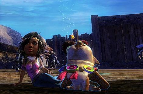 Flameseeker Chronicles: Customization and playing together in Guild Wars 2's feature pack