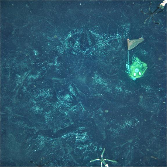 This ocean-bottom seismometer was caught in lava when a volcanic portion of the seafloor erupted as it was collecting a year's worth of data.