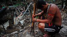 The Quiet Start Of Brazil's War On The Amazon