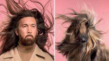 Fotógrafo registra cães e seus donos para mostrar o quando são parecidos