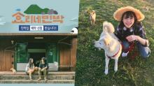 「厚~這也太難選了吧!」韓國網評《孝利家的民宿2》新職員候選8人!