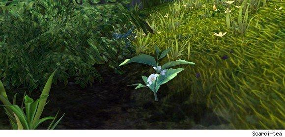Patch 5.1: Ore and herb spawn rates reduced by 50%