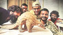 CMS COP13: Not pangolins, illegal trade to blame for coronavirus