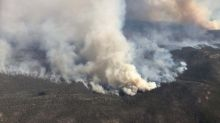 Australia bushfires: Young Britons can volunteer in affected areas to be eligible for visa