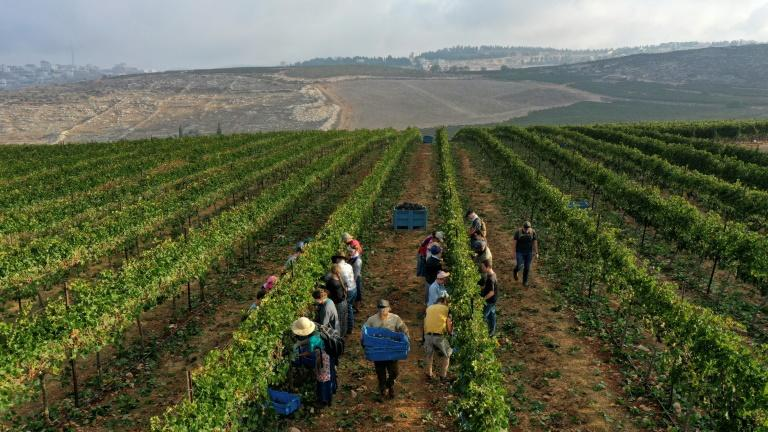 Many evangelical Christians support Israel's settlement project