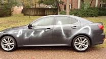 Cars and property targeted in vandalism spree