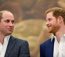 Prince William and Harry split Diana memorial fund in official settlement for new working lives