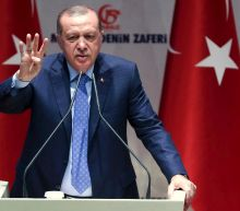 Germany cannot scare Turkey with 'threats': Erdogan