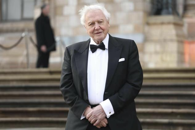 The BBC and Netflix team up for new David Attenborough nature documentary
