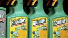 Exclusive: WHO cancer agency asked experts to withhold weedkiller documents