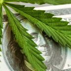 IBD 50 Stocks To Watch: Scotts Quietly Cultivates Its Marijuana Stock Status
