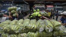 A Bélgica le timan con las mascarillas: 100.000 defectuosas que llegaron entre plátanos desde Colombia en vez de China