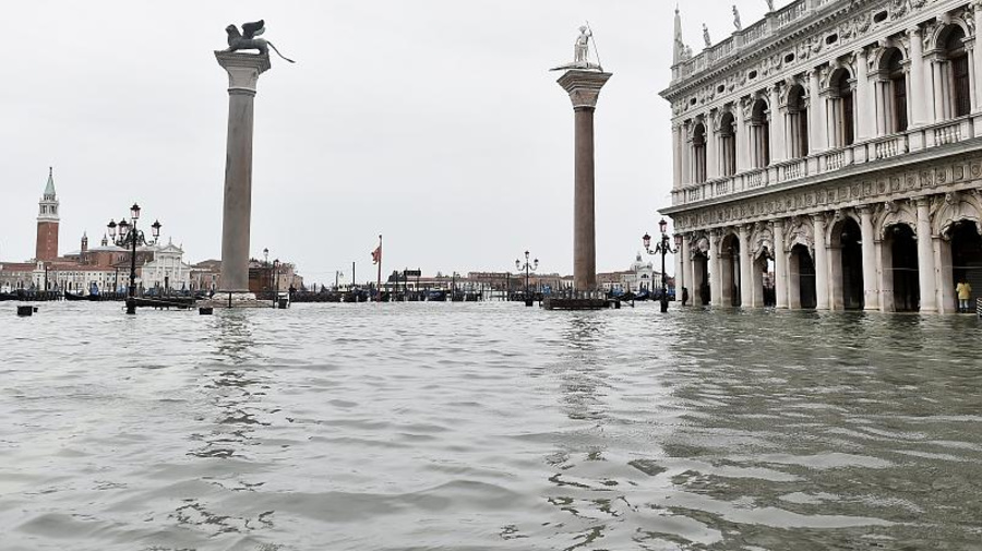 """Venezia: la """"repubblica dei castori"""" minacciata più dall'uomo che dalla natura"""