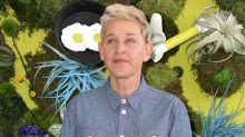 Ellen DeGeneres entschuldigt sich im TV