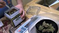 Recreational pot sales popular in Colorado