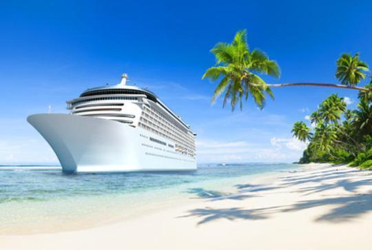 carnival cruise online job application
