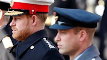 Prince Harry realised 'something rotten at heart of royalness', Queen's biographer claims