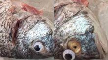 Pescados con ojos de plástico para que parezcan frescos