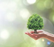 15 Most Sustainable Companies In the United States