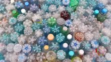 Wie oft können PET-Flaschen recycelt werden?