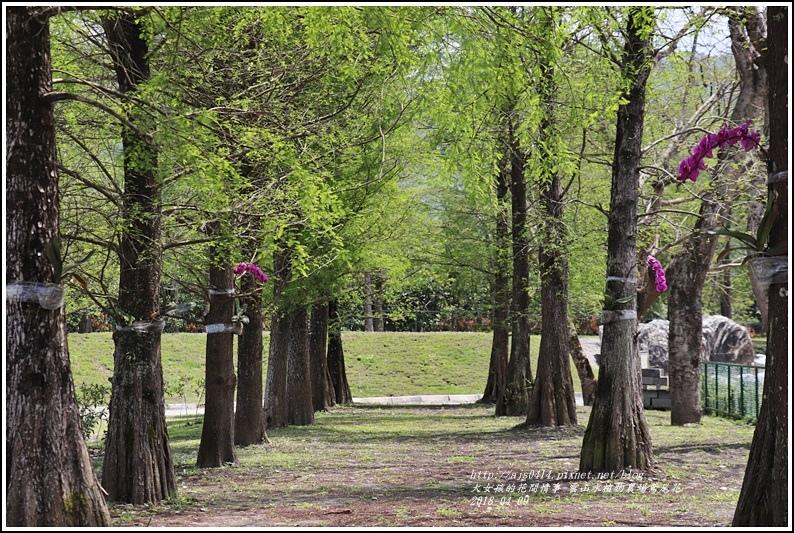 雲山水植物農場鳶尾花-2018-04-41.jpg