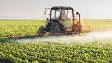 Is Verde Agritech Plc (TSE:NPK) Excessively Paying Its CEO?
