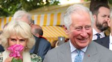 Prince Charles Weighs in on the Royal Wedding