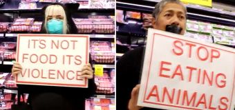 Vegans protest against shoppers buying meat