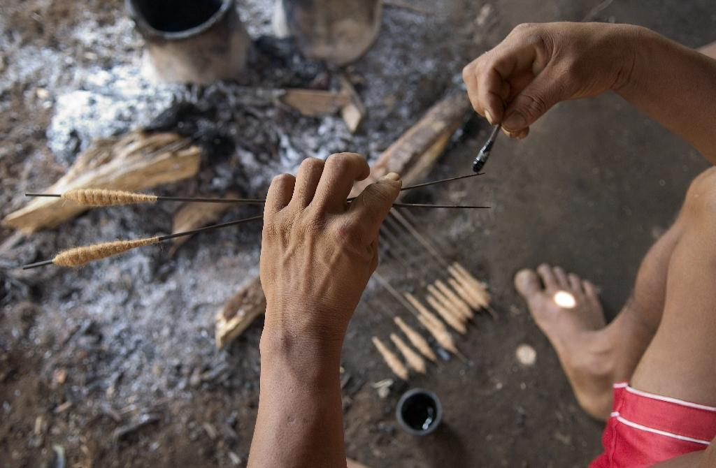 An Indian tribesman in the Colombian Amazon prepares arrows poisoned with curare, a potentially deadly poison used for hunting