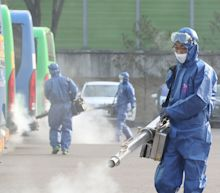 New virus outbreaks in China, abroad rekindle concerns