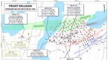 Prolongation de la minéralisation au projet Nelligan, au Québec, d'après les premiers résultats du programme de forage d'hiver de 2020 d'IAMGOLD