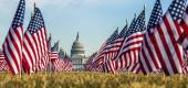 """""""The Field of Flags"""" at the National Mall represents Americans who died from COVID-19. (AP)"""