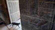 Antigua inscripción recuerda al Egipto moderno los riesgos de una sequía