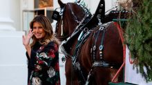 Melania Trump shares a sneak peek of White House holiday decorations