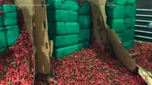 Nearly 4 Tons of Marijuana Found Hidden in Jalapeño Peppers Seized in San Diego