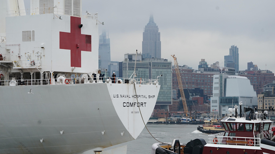 How much are the Navy hospital ships helping?