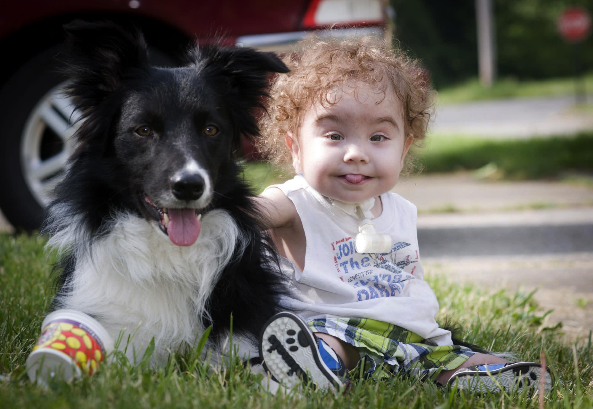 Смешные картинки дети и собаки смешное, крестиком