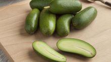 Avocado ohne Kern - der neue Food-Trend?