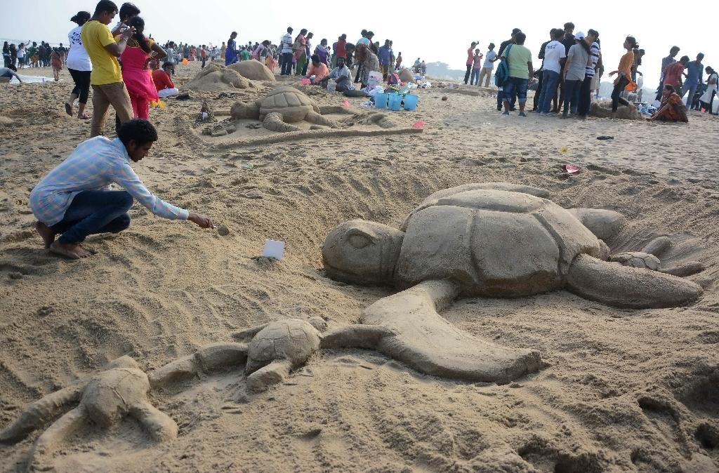 Despite awareness campaigns such as 'Save a Turtle', some 20,000 are reportedly smuggled out of India's Uttar Pradesh state every year
