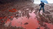 China to hit polluters harder in new soil protection law
