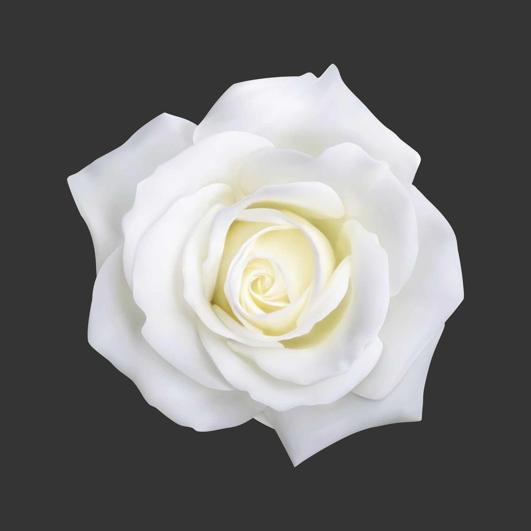 Why grammy awards artists will wear white roses biocorpaavc Choice Image