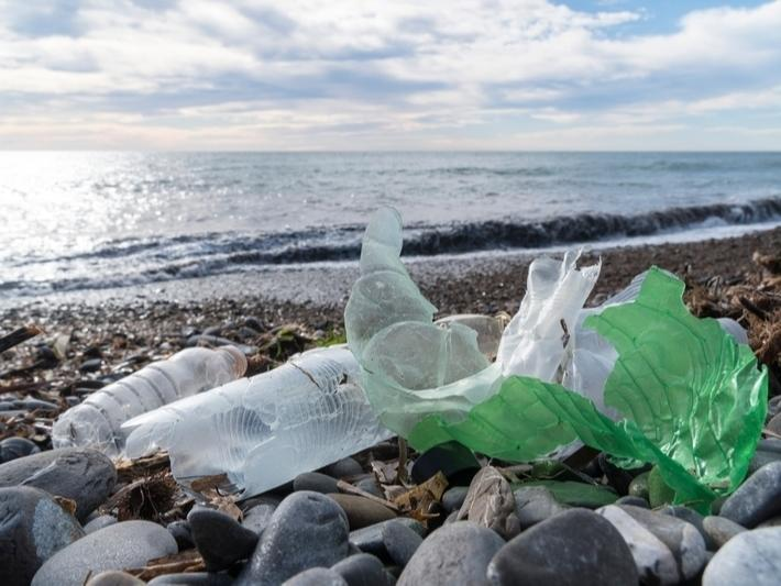 The 36th Annual California Coastal Cleanup takes place on an individual level for 2020.