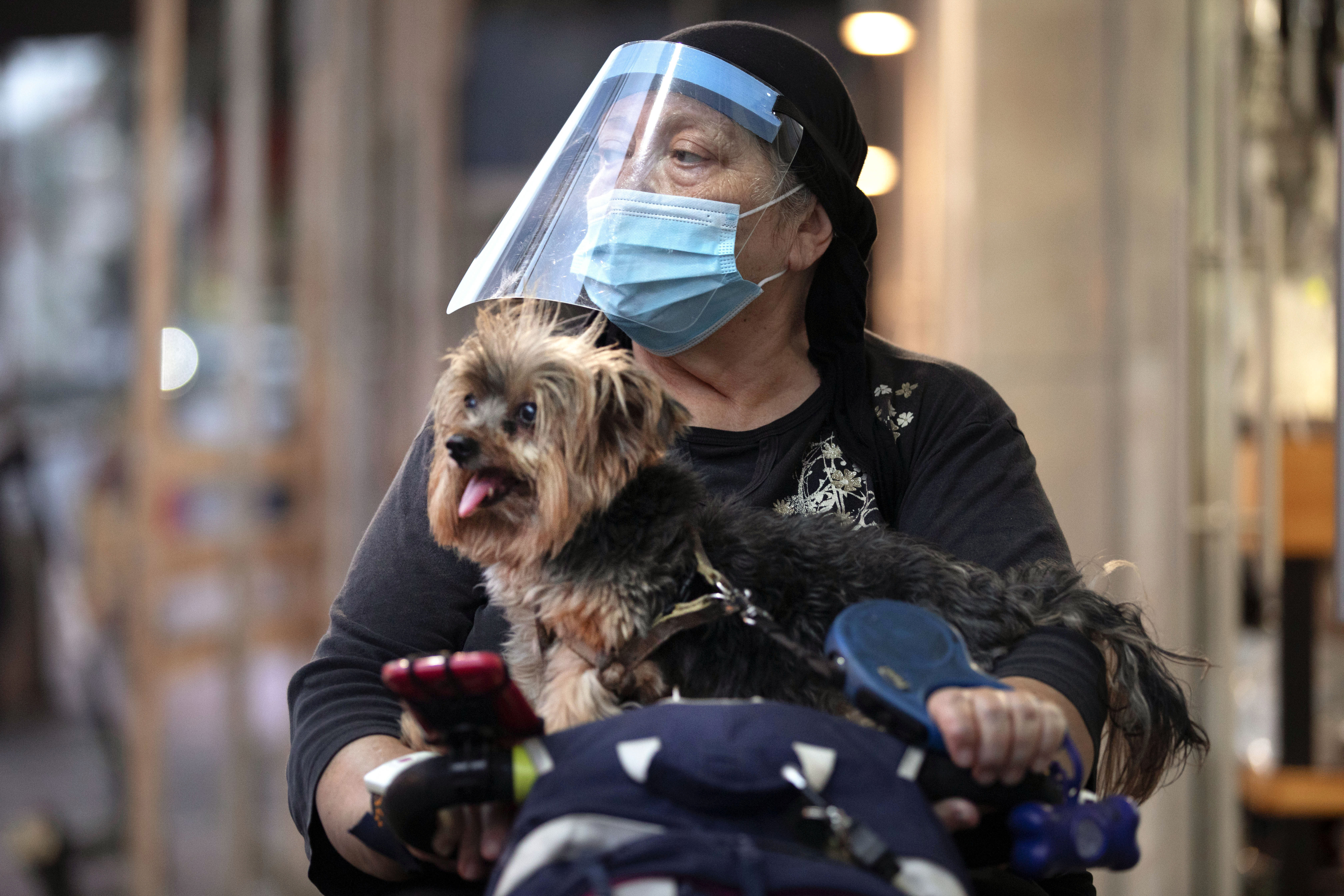 An ultra-Orthodox Jewish woman wearing a face mask and shield amid the coronavirus pandemic, rides her mobility scooter with her dog, in Bnei Brak, Israel, Tuesday, Sept 8, 2020. Israel has tightened restrictions on 40 Israeli cities and towns with worrying outbreaks, imposing nighttime curfews, and shutting down schools. After appearing to contain an earlier outbreak in the spring, Israel now has one of the world's worst outbreaks, adjusted for population. (AP Photo/Oded Balilty)