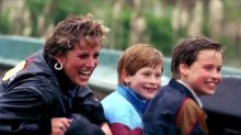 Prince William, Prince Harry regret final words to Diana