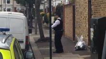 Mort de Sophie Lionnet à Londres : le couple reconnaît avoir brûlé son corps