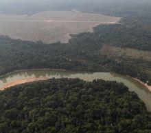 Eight European countries urge Brazil to take action on Amazon deforestation